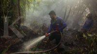 PTPN V klaim mampu menjaga area lahan bebas bakar selama 25 tahun