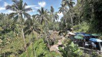 Mereka Juga Kangen Pantai di Bali