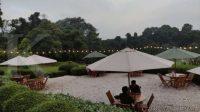 Dongkrak pengunjung, Kebun Raya Bogor revitalisasi Taman Meksiko dan Akuatik