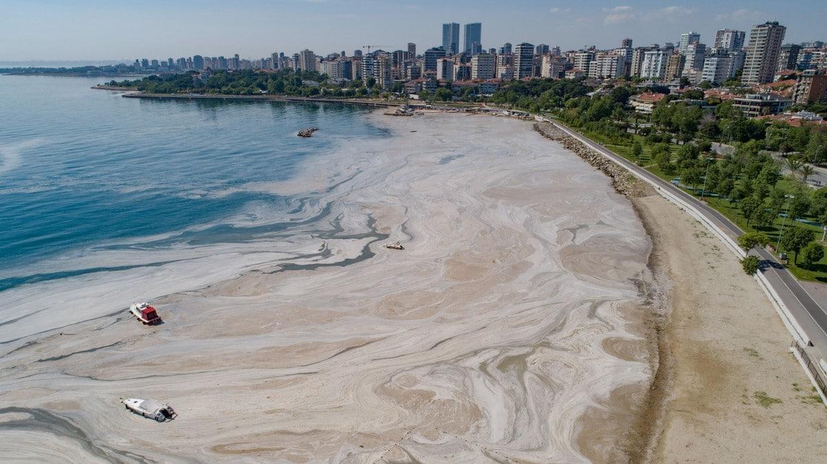 Pantai di Turki Alami Problem 'Ingus Laut' Akibat Perubahan Iklim
