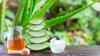 Perawatan kulit dengan lidah buaya. (Shutterstock)